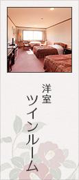 洋室 ツインルーム
